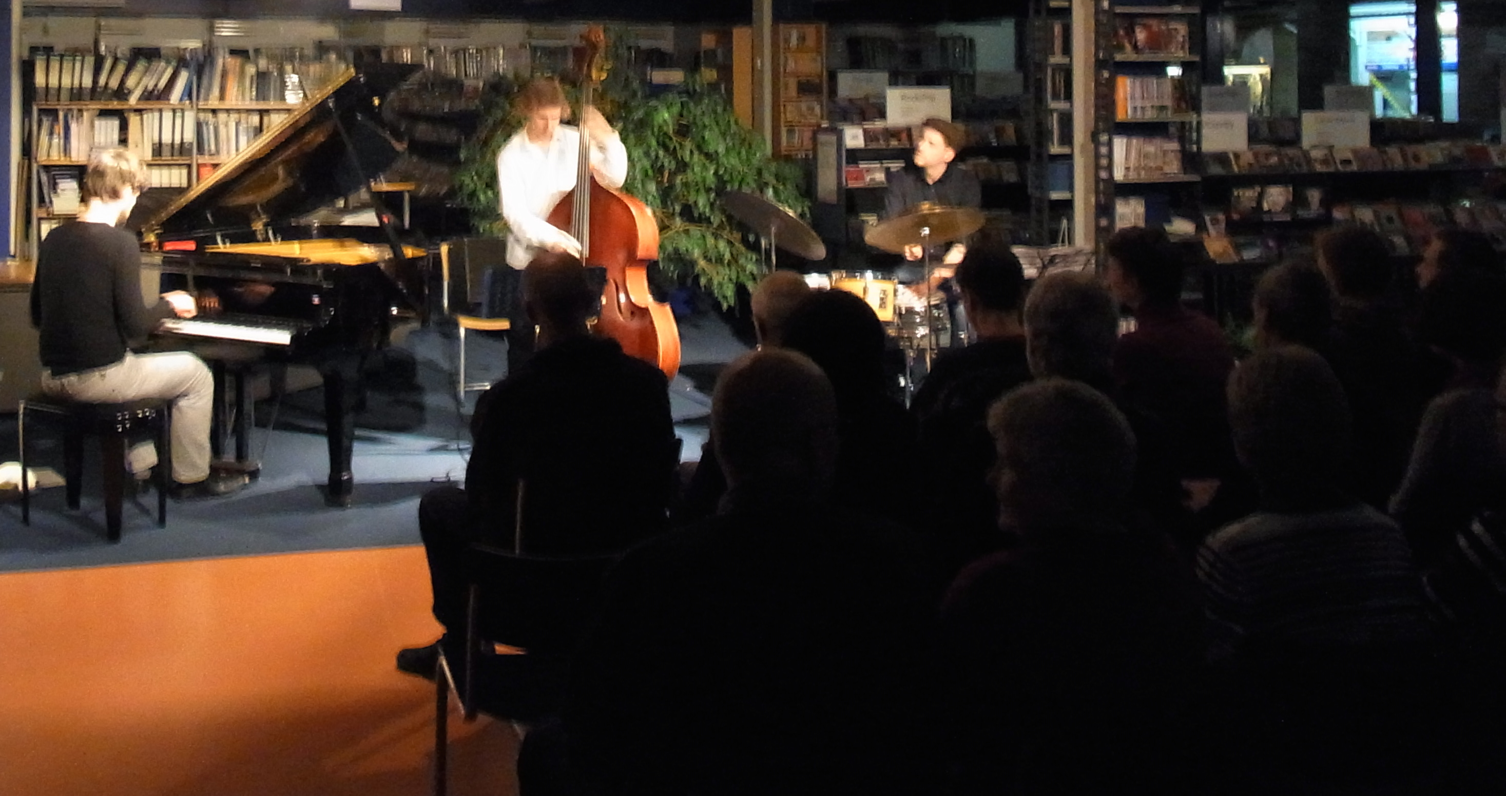 Stephan Becker Trio_Neumünster 2015